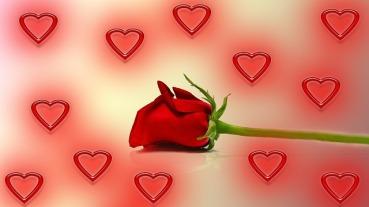 l'amour est un bien fragile
